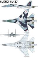 Sukhoi Su-27 by bagera3005