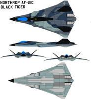 Northrop AF-21C Black tiger by bagera3005