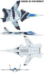 Sukhoi Su-47B Berkut by bagera3005
