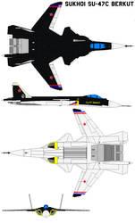 Sukhoi Su-47C Berkut by bagera3005
