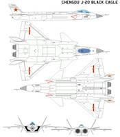Chengdu J-20 Black Eagle by bagera3005