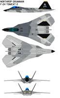 Northrop Grumman F-24 Tomcat 2 by bagera3005