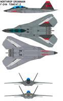Northrop Grumman F-24A Tomcat by bagera3005