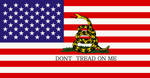 DONT TREAD ON ME  USA by bagera3005