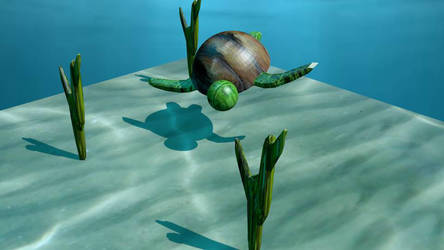 turtle scene by entreaties