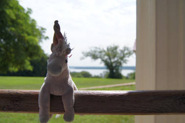 Charmer at Mount Vernon by Americaiuno
