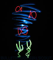 Light Painting : Fish 3 by Bulletproofgirlscout