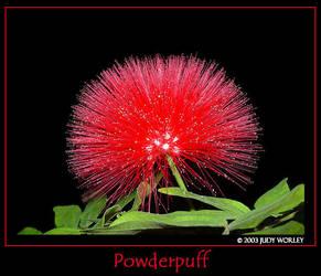 Powderpuff by Tazzy-