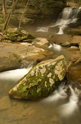 Spotted Rock at Honey Run by BuckNut