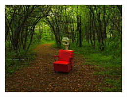 Portrait Of A Chair by BuckNut