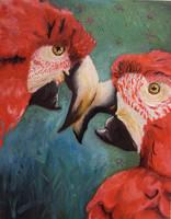 Scarlet Macaws by delta-ex