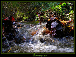 Streamgreen by WildFeathers