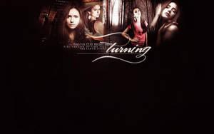 the-vampire diaries 1 by mia47