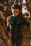 Diarmuid - Fate/Zero by Kaelcosplay