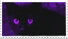 Cat by diasilli