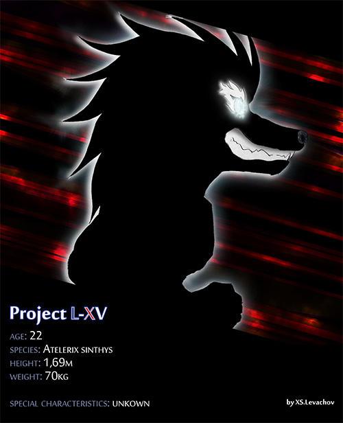 xsonic's Profile Picture