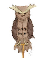 noctowl by 1-084
