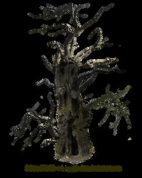 HQ PNG Stock Spooky Tree Mann by E-DinaPhotoArt