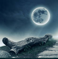 Premade BG Moonlight 2 by E-DinaPhotoArt