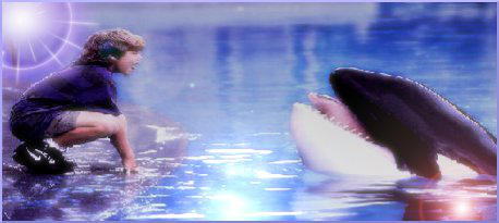 Free Willy Siggy by BuffyShakira