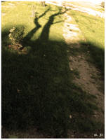 Shadow by ViuvaNegra