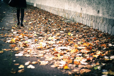 Automne colore by leingad