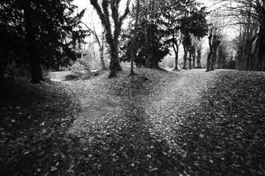 Deux chemins by leingad