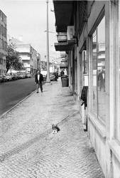 Les rues de Lisbonne I by leingad