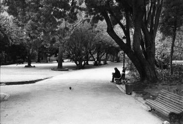 Jardim de Estrela by leingad