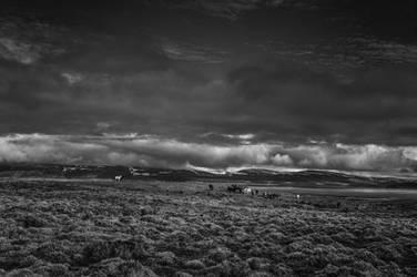 Icelandic Blackscape II by leingad