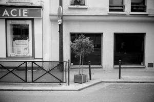 Paris Street 573 by leingad