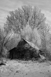 a long forgotten sanctuary by Vacantia