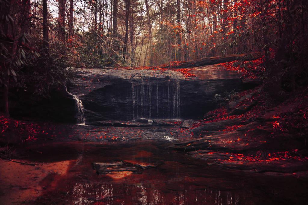 crimson raindrops by Vacantia
