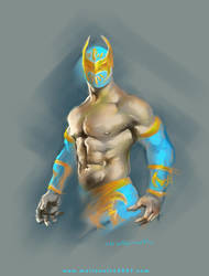 SIN CARA wwe by marioneTTe2007