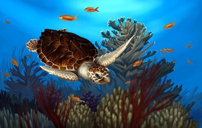 Loggerhead Sea Turtle by Nachiii