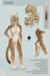 Kitty Shin ref sheet by shinigamigirl