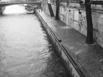 River Seine by shellybunny