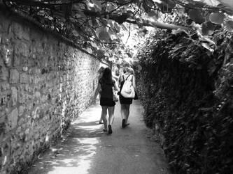 Take a path by shellybunny