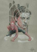 Spiderman by TrevorGrove