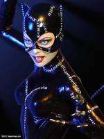 TWEETERHEAD Michelle Pfeiffer Catwoman 5 by TrevorGrove