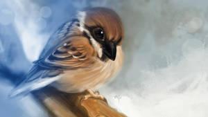 Sparrow by popChar