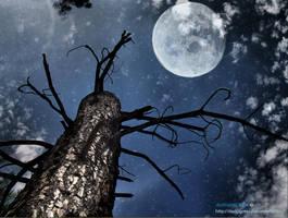 Under The Stars -Final- by darkligress