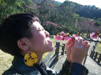 Sakura is bad? by b1kkur1