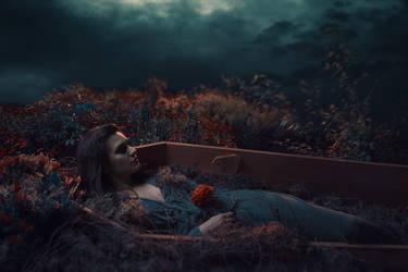 Sleeping Beauty by NickChao