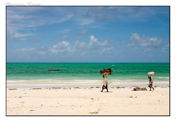 Working at the Indian Ocean by CLanez