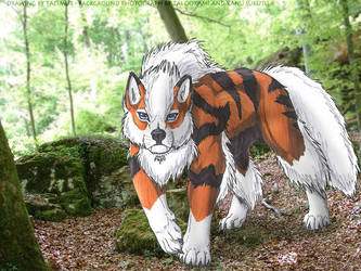 Arcanine in the forest by Tacimur