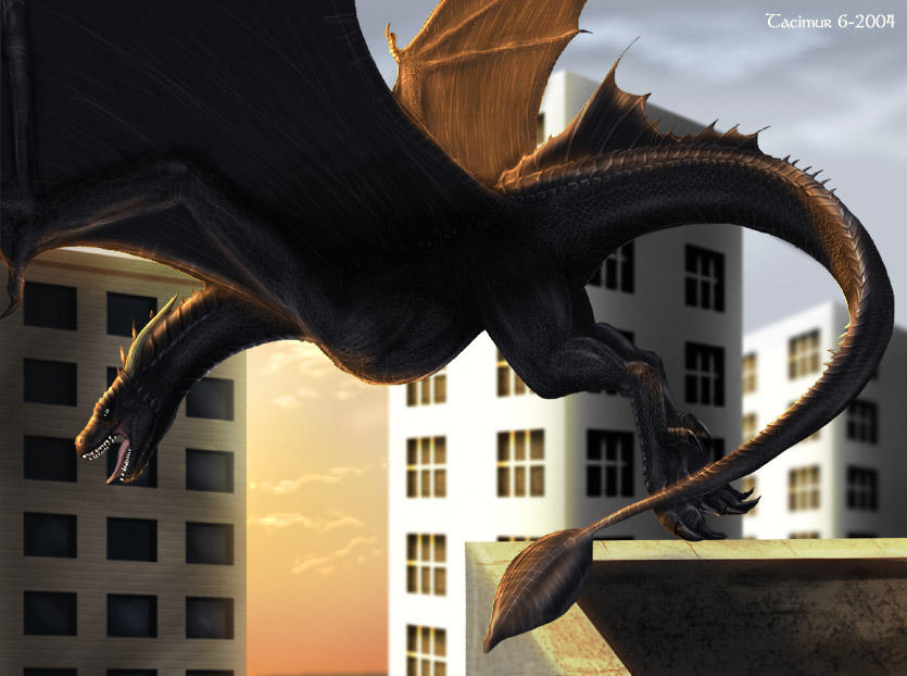City Wyvern by Tacimur