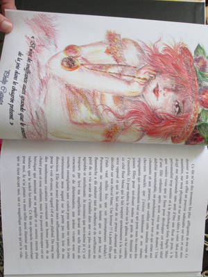 My first book : La Rose Rouge de l'Ouest 3 by Rosa-Lynda