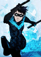 Nightwing Kick by soccercat4685