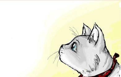 meow by Eisschweif